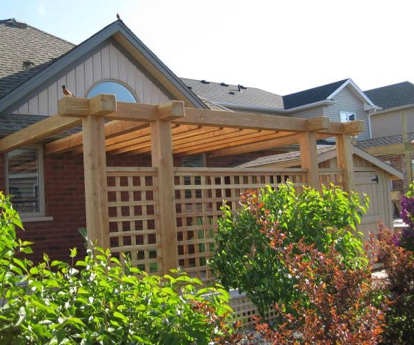 Rough-Cut Timber Pergola